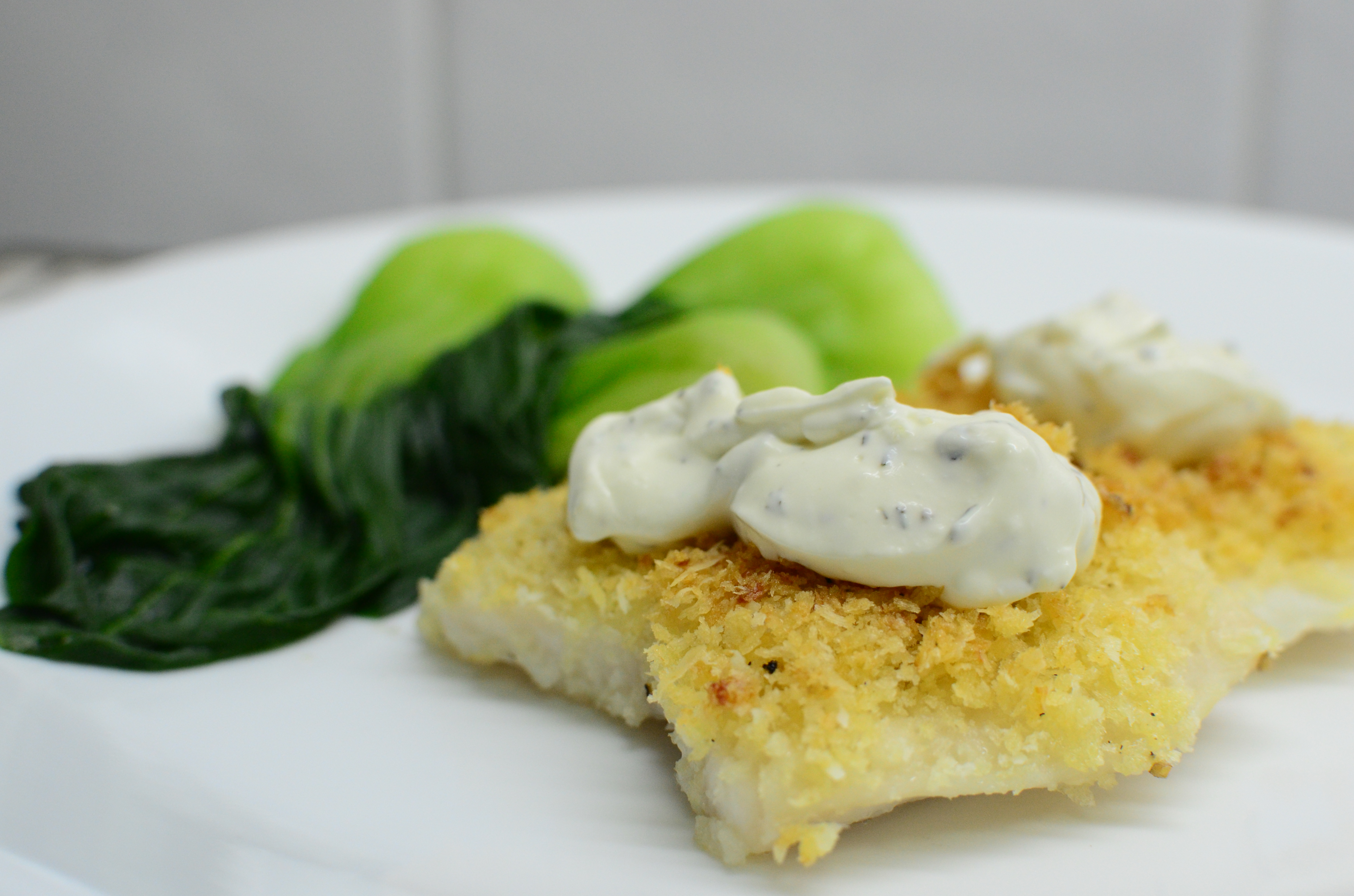 Parmesan crusted fish fillet with creamy dill sauce for Parmesan crusted fish