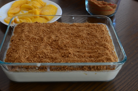 Mango Float Step 10