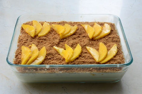 Mango Float Step 11