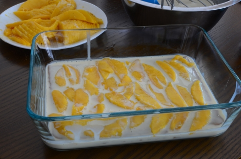 Mango Float Step 6 to 7