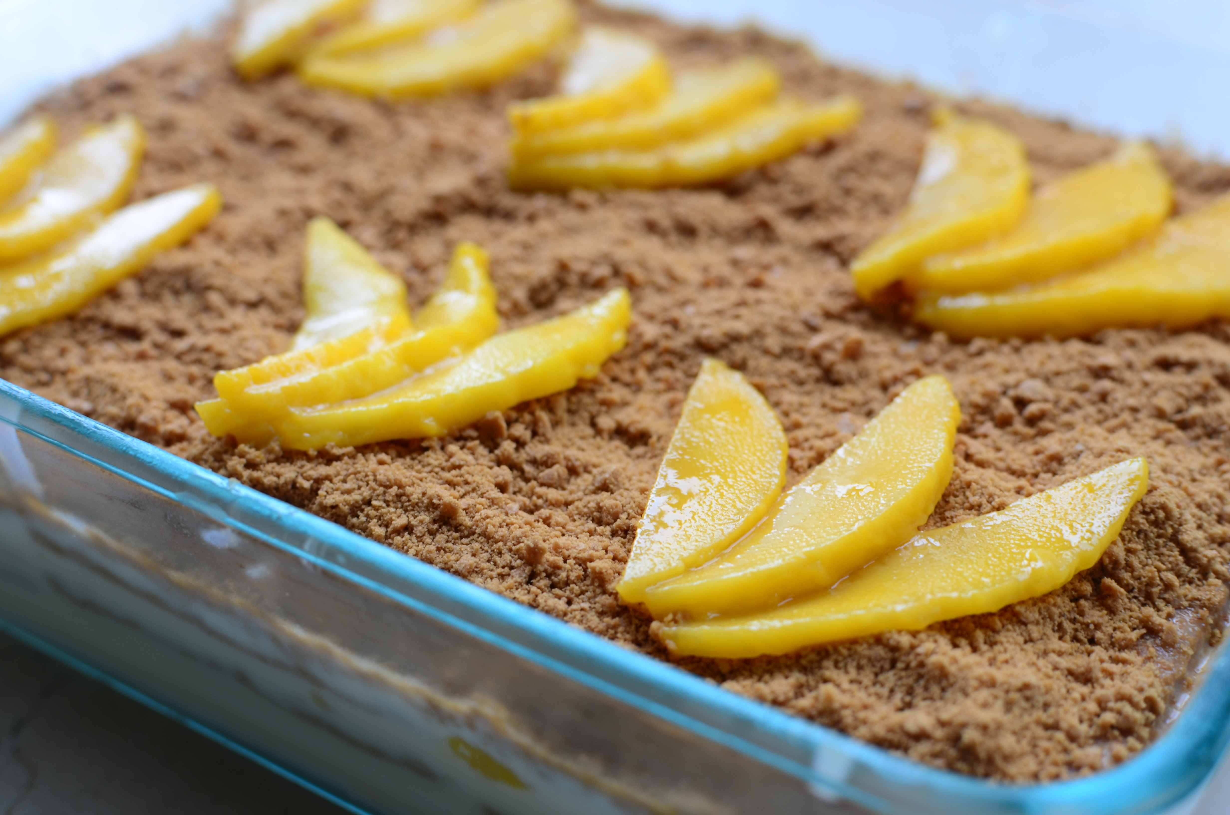 how to prepare a mango float