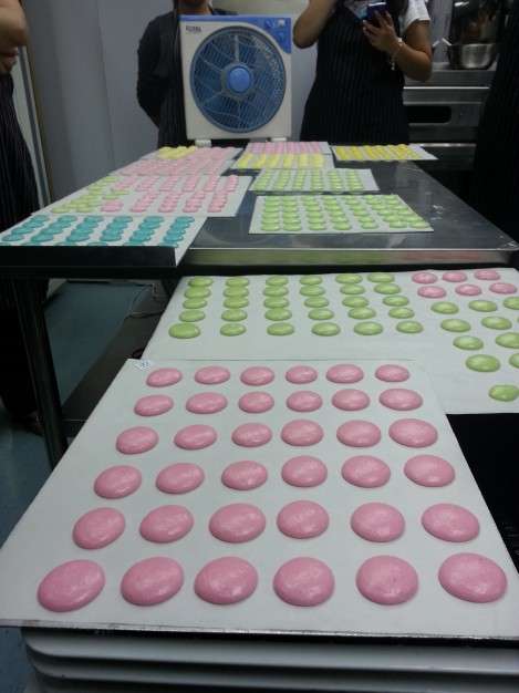 Macaron Waiting for them to dry